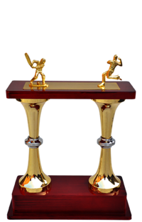 MT 3462 Metal Cricket Trophy