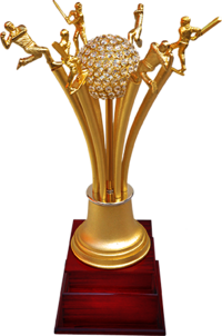 MT 3463 Metal Cricket Trophy