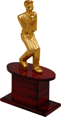 MT 3404 Cricket Metal Trophy