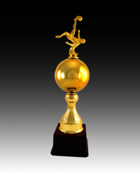 BT 791 Football Fiber Trophy