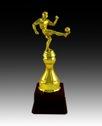 BT 1241 Fiber Football Trophy