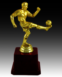 BT 513 Football Fiber Trophy