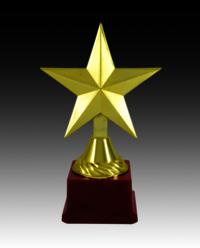 BT 1491 Fiber Star Trophy