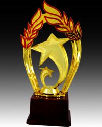 BT 525 Star Fiber Trophy