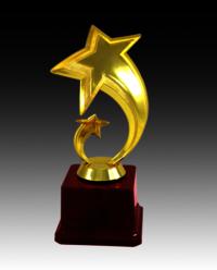 BT 534 Fiber Star Trophy