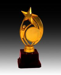 BT 553 Fiber Star Trophy