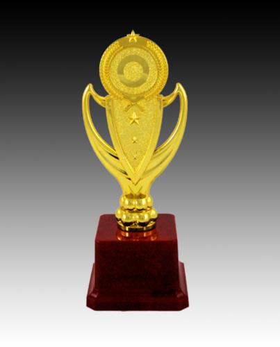Star Fiber Trophy