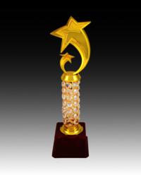 BT 567 Star Fiber Trophy