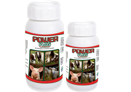 Multi Vitamin Supplement For Goat & Sheep (Power Plus)