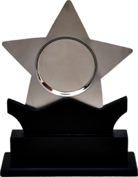 TRO 3306 Star Metal Trophy