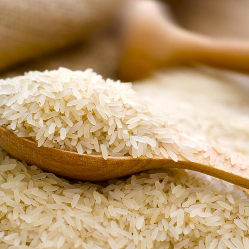 Rice In Raipur, Rice Dealers & Traders In Raipur, Chhattisgarh