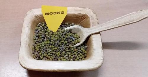 Moong Seeds
