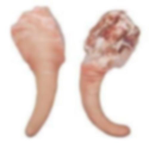 Frozen Pork Tail