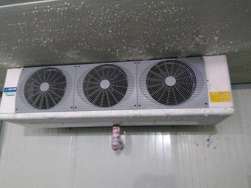 Freezer Room