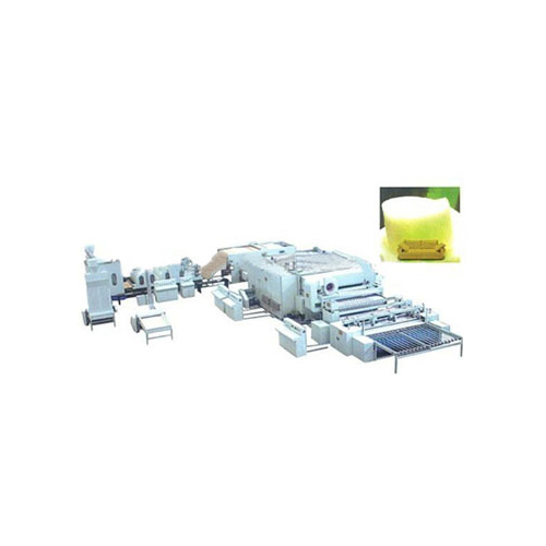 Nonwoven Machinery Plant
