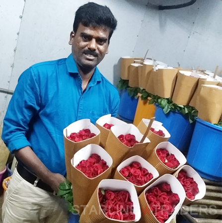 Indian Fresh Cut Rose Flowers