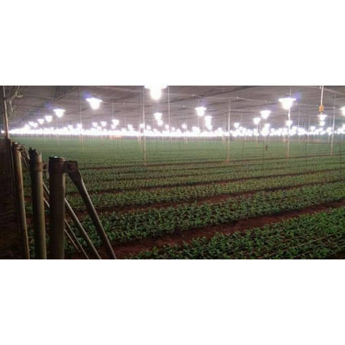 Greenhouse Lighting System
