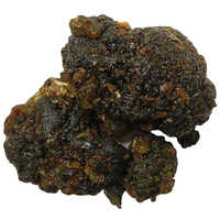 Commiphora Mukul Guggul