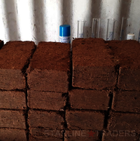 Coco Peat Bricks 650 Grams