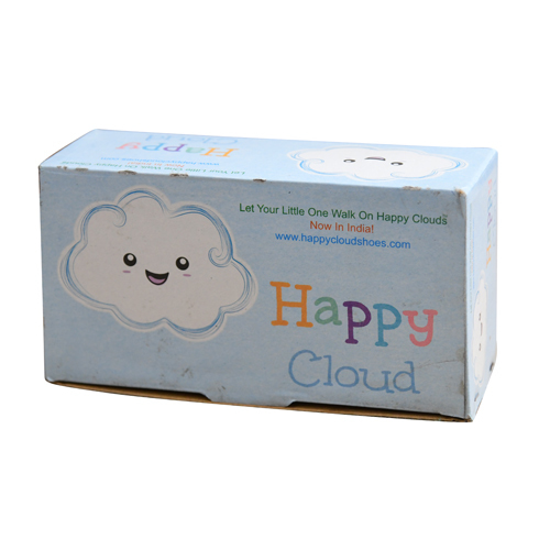 Heavy Duty Corrugated Carton Box