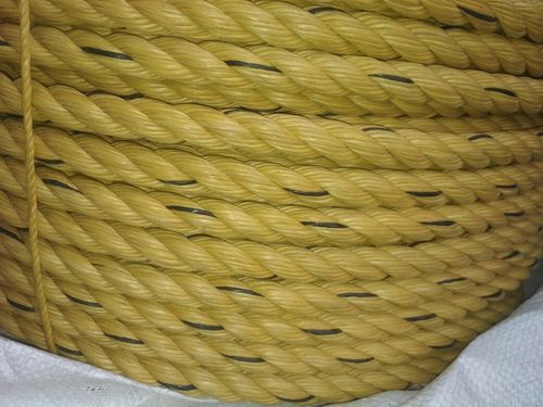 PP Danline Rope -Yellow