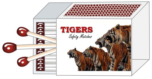 Tiger Safety Matches Manufacturer