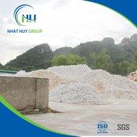 Calcium Carbonate Powder from Vietnam