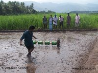 Paddy Drum Seeder