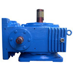Vertical Worm Reduction Gearbox
