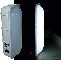 COMPACT EMERGENCY LIGHT
