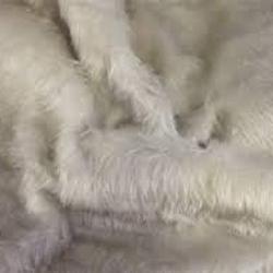Plain Fur Fabric