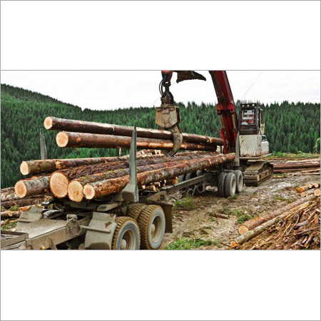 Logging manpower services