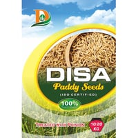 Paddy Seed