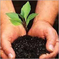 Soil Conditioner Fertilizer