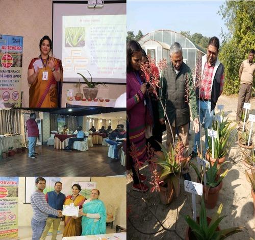 Medicinal Herbs Cultivation Training Program