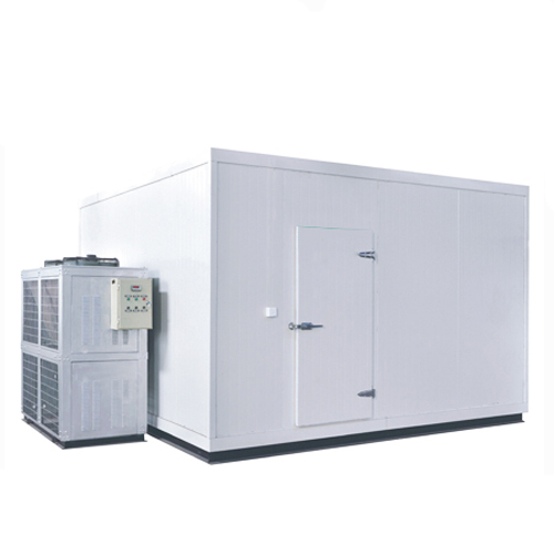Ultra-Low Temperature Cold Storage