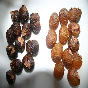 Daily Spaa Soap Nuts
