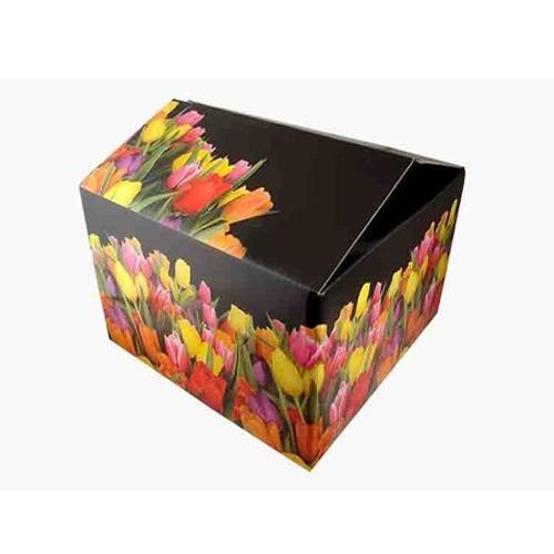 Color Corrugated Box