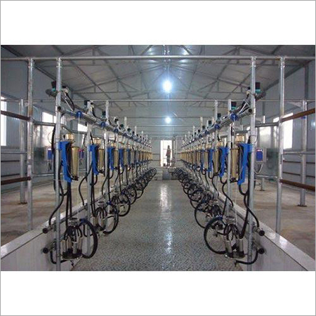 Parallel Milking Parlour