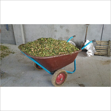 Green Fodder Double Wheel Trolley