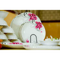Dinner Plates Set With Bowl