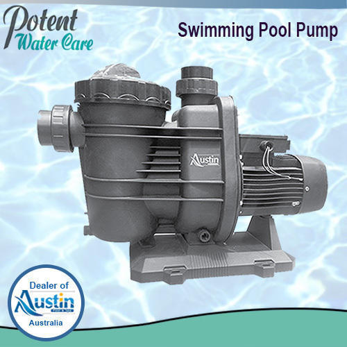 Swimming Pool Duo Pump