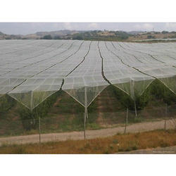 Anti Hail Insect Net