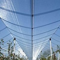 Insect-Proof Nets And Anti-Hail Nets