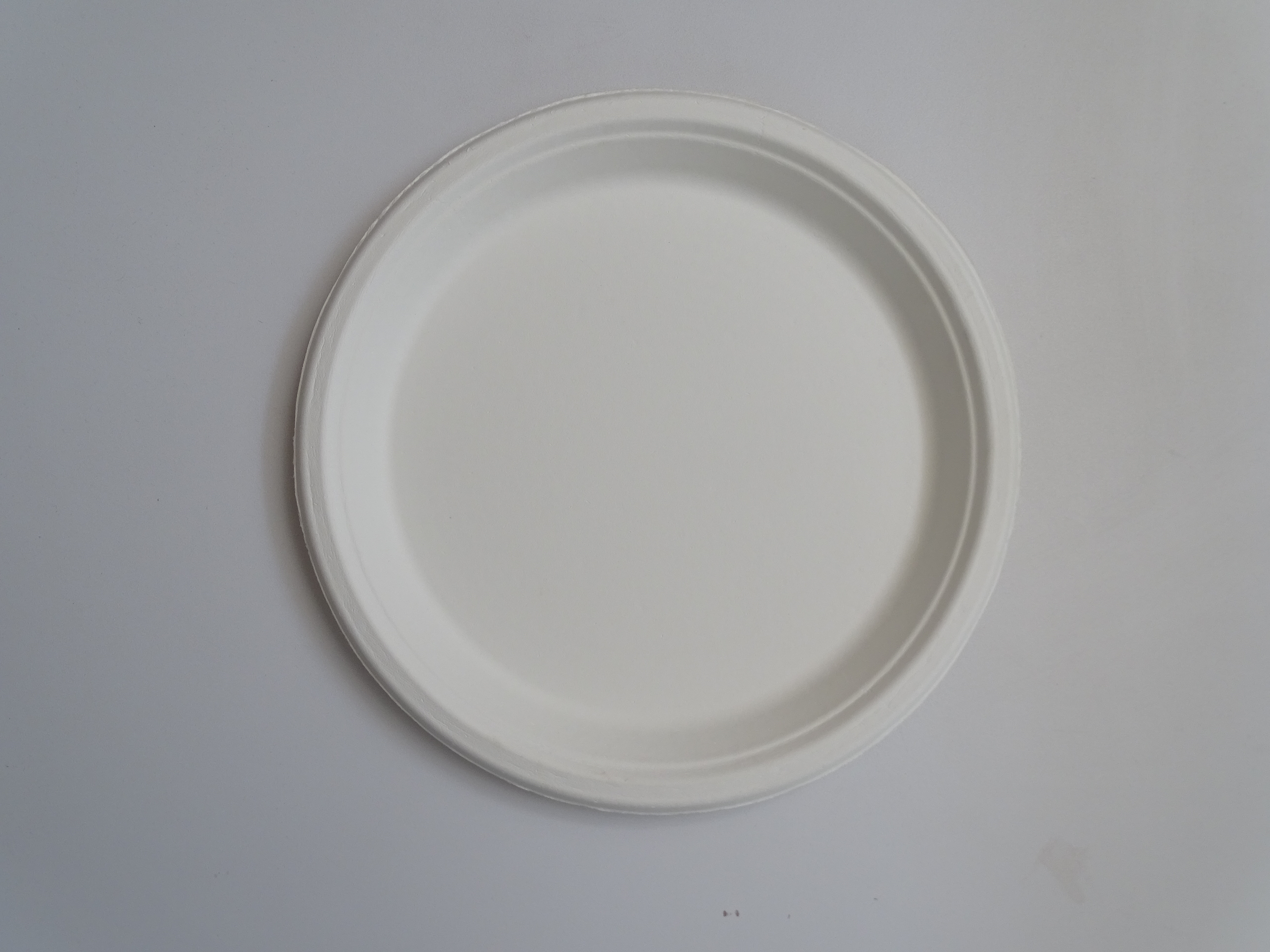 Bagasse Round Plate