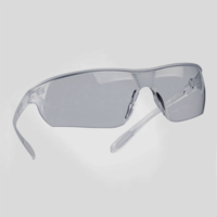 Evo Lite Safety Goggles