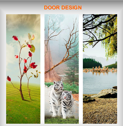 Digital Door Skin Sheet