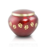 Odyssey Brass Pet Urn With Silver & Golden