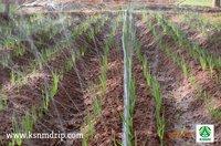 Spray Irrigation Kit 500 sqm