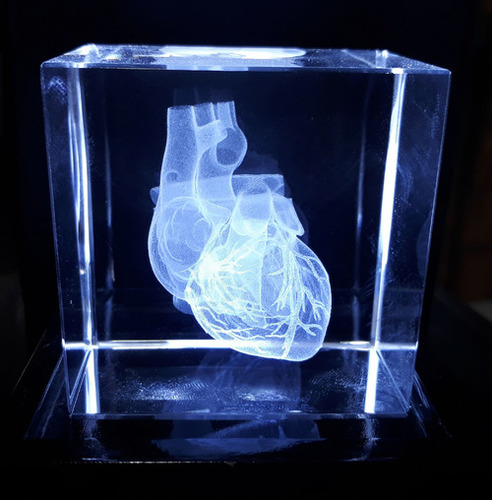 Human Heart 3D Engraved